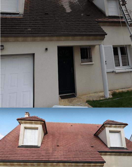 Démoussage de toit, rénovation des chiens assis